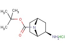tert-butyl rac-(1S,2R,4R)-2-amino-7-azabicyclo[2.2.1]heptane-7-carboxylate hydrochloride
