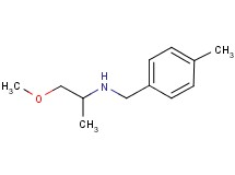 (2-methoxy-1-methylethyl)(4-methylbenzyl)amine