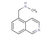 (isoquinolin-5-ylmethyl)methylamine