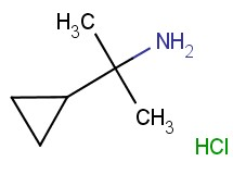 (1-cyclopropyl-1-methylethyl)amine hydrochloride